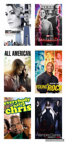 Popular TV Shows on Streaming Services